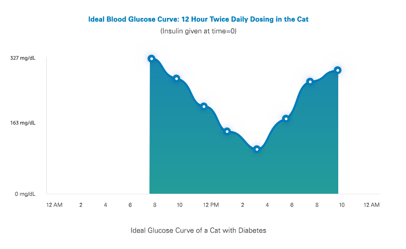 glucose curves for cats