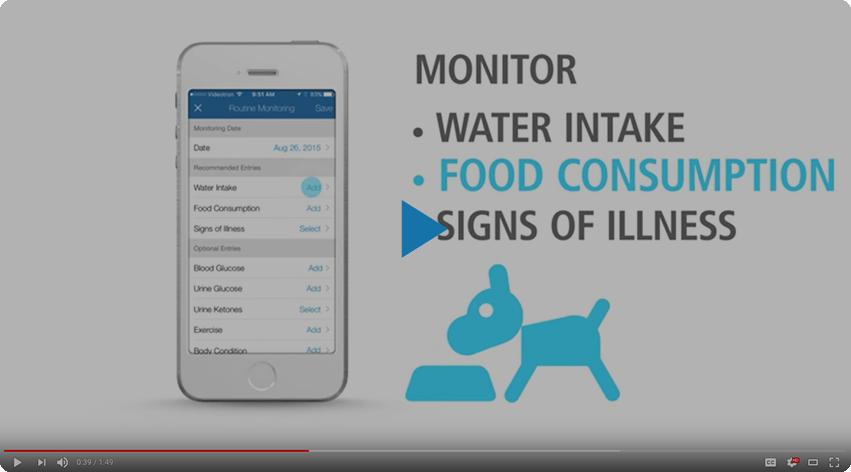 Pet Diabetes Tracker Mobile App Vetsulin